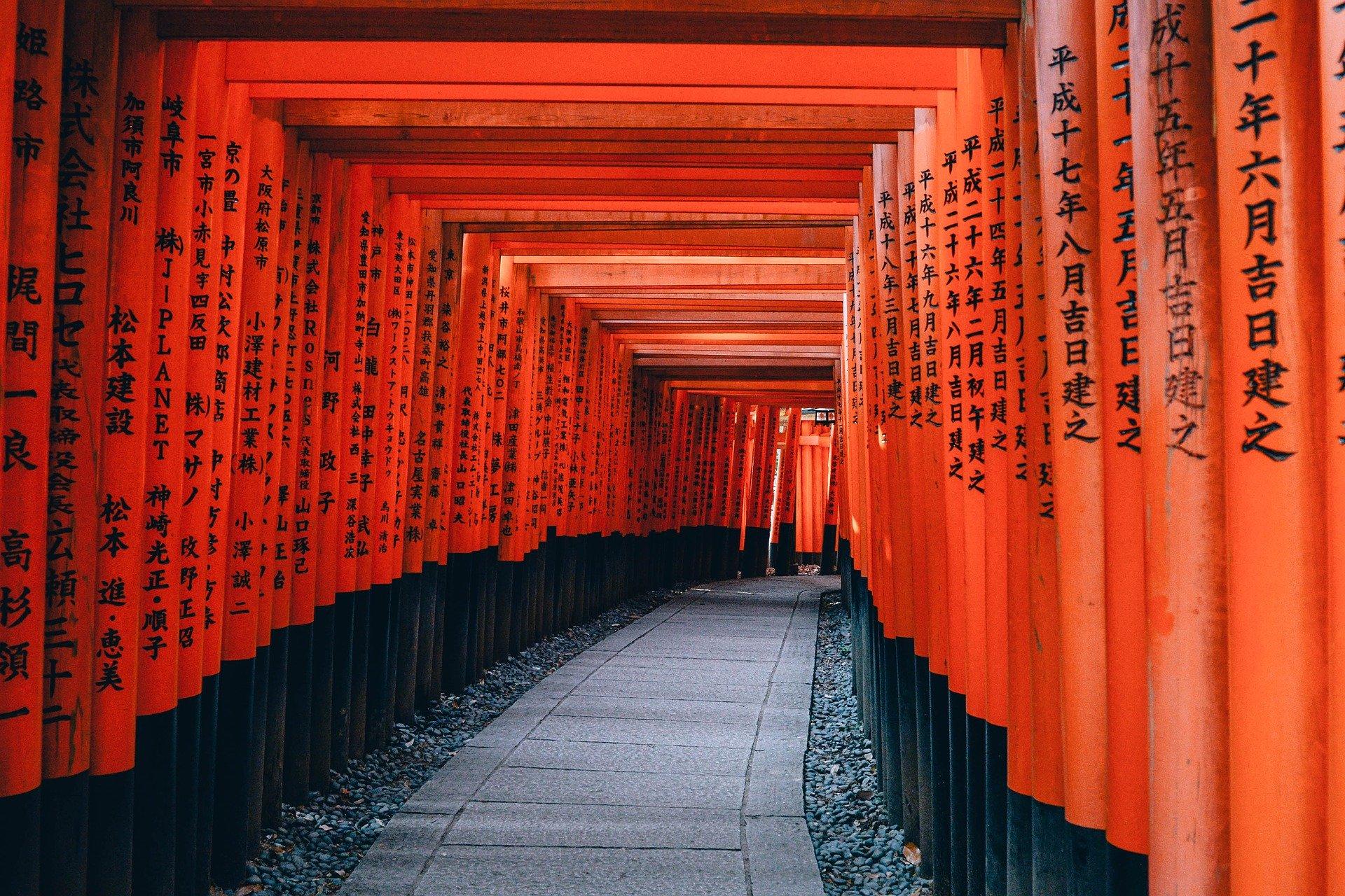5 choses essentielles à emporter pour votre voyage au Japon
