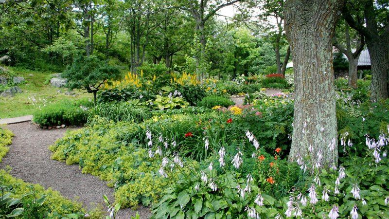 Conseils et astuces pour réussir l'aménagement de son jardin