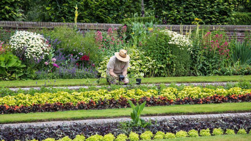 Trouver le bon jardinier à domicile tout en restant chez soi