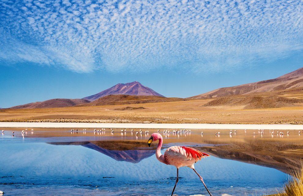 Découverte de l'Amérique du Sud : les pays à découvrir
